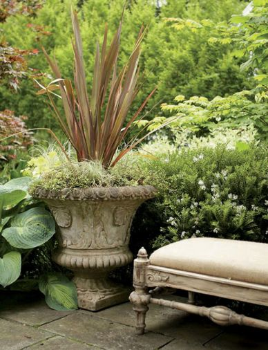 Plants in the ground can be allowed to cuddle up to container plantings used to articulate the corners of a terrace. Here Hosta 'Aurora Borealis' and white-flowered Hebe buxifolius go cheek-to-cheek with a handsome cement planter.