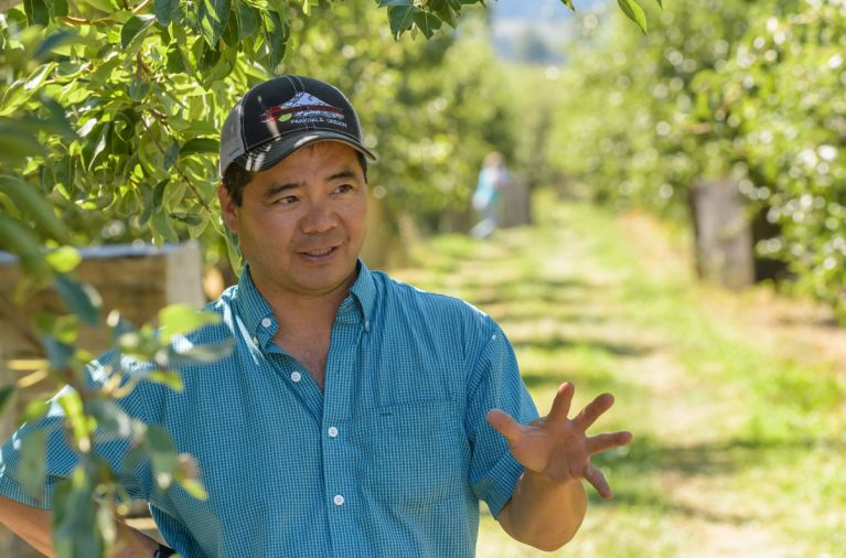Like his grandfather, Randy Kiyokawa has charted his own course of opportunity, growing Kiyokawa Orchards to 200 acres of strong fruit trees, most devoted to growing Anjou, Bartlett, Bosc, Comice, Forelle and Seckel pears.