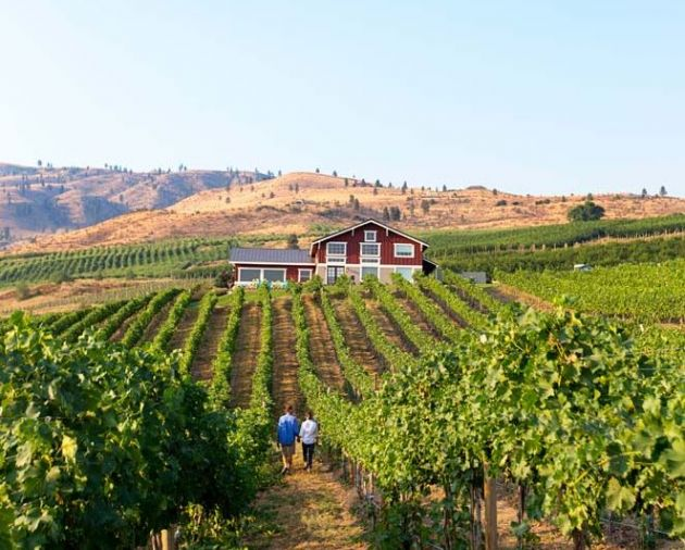 Overlooking the majestic Columbia River, award winning Alexandria Nicole Cellars' winery and vineyard provides an awe-inspiring backdrop for wine and food enthusiasts.