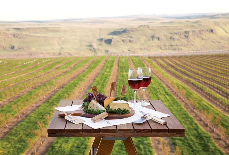 Visit Maryhill Winery at 9744 WA-14, Goldendale, Washington or in Kendall Yards at 1303 W Summit Parkway, Suite 100, in Spokane, Washington. A new location in Vancouver, Washington, near the Grant Street Pier, is slated to open late Spring 2019. Wines distributed throughout the United States. www.maryhillwinery.com