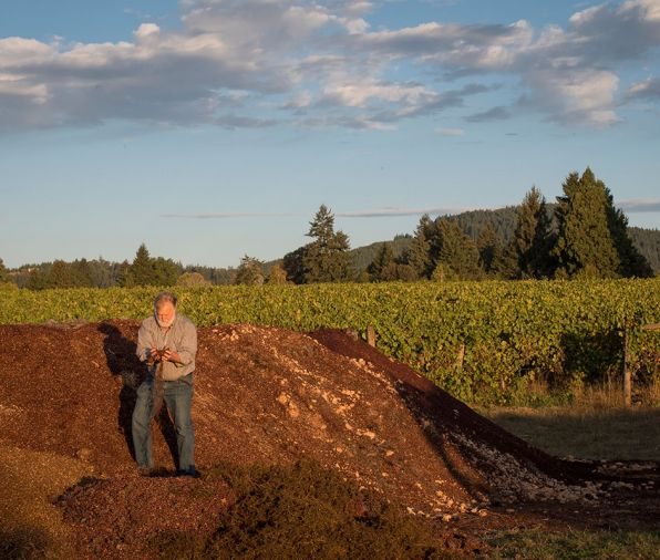 "Montinore Estate in North Willamette Valley, Oregon with 240 acres is one of the largest producers of certified estate wines made from Biodynamic grapes in the country. Partner Rudy Marchesi serves on the committee of international Biodynamic vintners and helped develop a curriculum for the practice. Marchesi atop one of Montinore Estate's many compost piles. Nutrient rich compost is tested after several months of fermentation to ensure maximum nutritional value. Much like winemaking techniques, the formulas for the ""organic teas"" are tested and perfected over time using a variety of plants, herbs and minerals. Photo © Andrea Johnson"