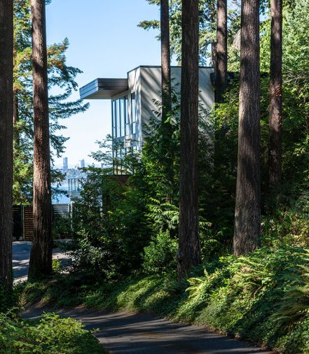 Architect Paul Moon embraced the existing forest with floor-to-ceiling windows that open both on view and towering firs.