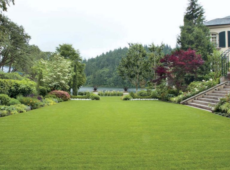 When landscape architect Larry Cavender began work on this garden, he had two main charges: create a handsome entry from the front of the house and its motor court into the lower garden, and restore the compacted soil to something that would actually grow a plant. All of this has been accomplished, plus framing Lake Oswego views with inventive plantings and paving.