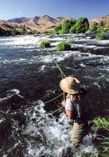 Judith O'Keefe in prime water during the spring salmon fly hatch.