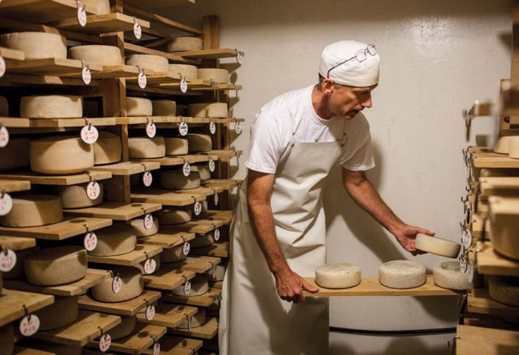 A pioneer in the Oregon cheese world, Pierre Kolisch established Juniper Grove Farm in 1987. Today, Kolisch's cheese cellar houses 500 wheels, including wheels of Redmondo and Tumalo Tomme, which are aged in the cellar for as long as nine months.