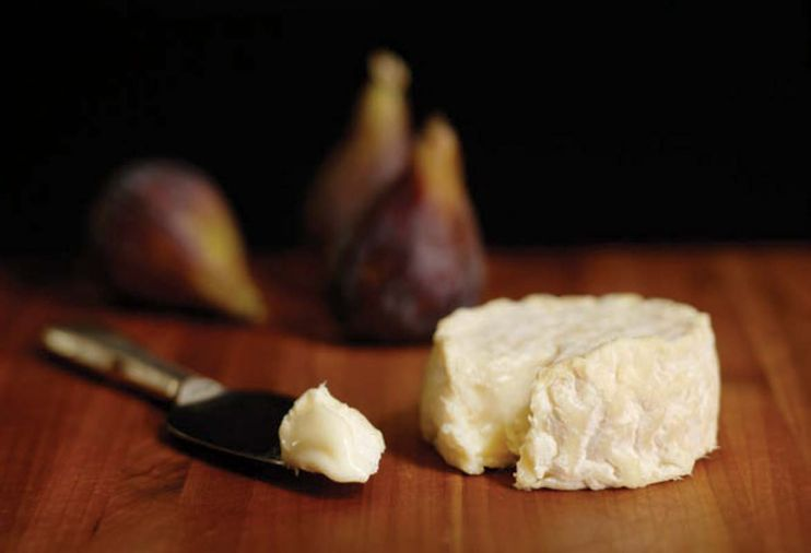 <strong>Otentique from Juniper Grove Farm</strong> is the mildest of Juniper Grove's mold ripened cheeses. At 10 weeks of age, it is fully ripe. Pair it with Sokol Blosser's Evolution 16th Edition.