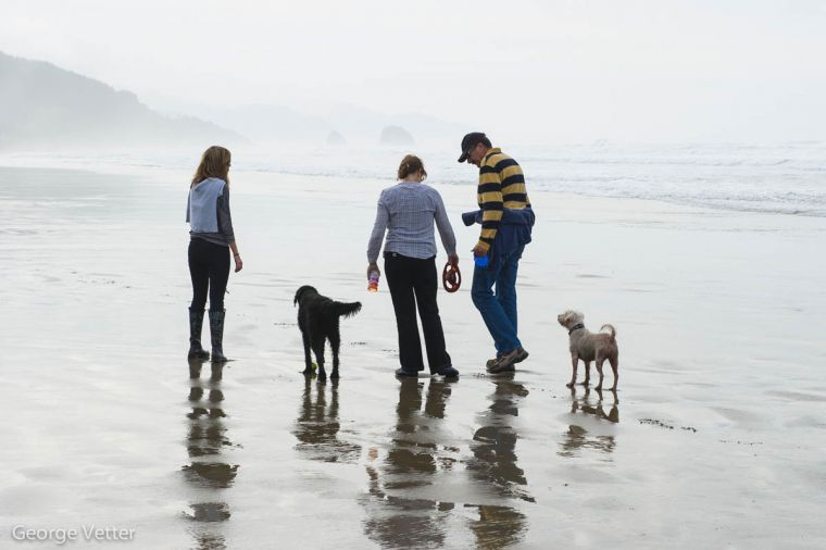 There are four miles of walkable beaches rich with marine life. The best time to go is at low tide. After you've taken the family to search for must-stay-there starfish and anemones, stroll along Cannon Beach's main street, Hemlock, for a treasure to take home.